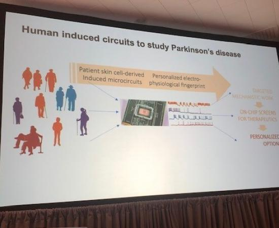Parkinson brains onPArkinson brains on a chip a chip